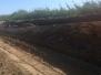 Ejecución de tareas de extracción, transporte de suelo, relleno y compactación.