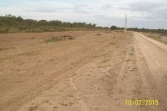 Limpieza zona de Camino de los Canales San Martin, Contreras Lopez y Maco Manogasta 10 2015