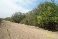 Limpieza zona de Camino de los Canales San Martin, Contreras Lopez y Maco Manogasta 12 2015