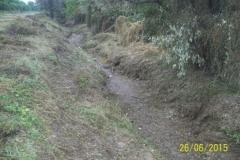 Limpieza zona de Camino de los Canales San Martin, Contreras Lopez y Maco Manogasta 14 2015