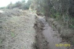 Limpieza zona de Camino de los Canales San Martin, Contreras Lopez y Maco Manogasta 15 2015