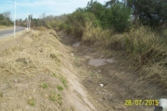 Limpieza zona de Camino de los Canales San Martin, Contreras Lopez y Maco Manogasta 19 2015