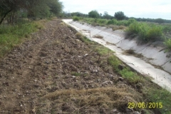 Limpieza zona de Camino de los Canales San Martin, Contreras Lopez y Maco Manogasta 3 2015