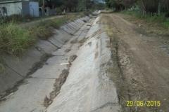 Limpieza zona de Camino de los Canales San Martin, Contreras Lopez y Maco Manogasta 4 2015