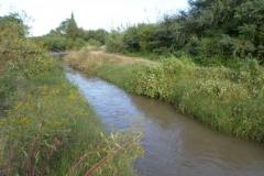 Vista antes de la limpieza de taludes a ambas margenes canal Contrera Lopez 1