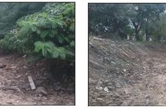 Limpieza del Canal Sur 1 Seccion. Estado anterior