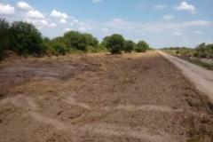 Limpieza de la zona de camino, en margen izquierda del canal San Martin 2