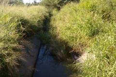 Vista antes de la Limpieza del talud en el canal Contrera Lopez