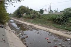 trabajos de revestimiento de solera del canal San Martin 5