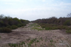 Reacondicionamiento de canales de drenajes. Periodo 2008-2015. Estado Anterior