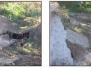 Obra: Arreglo de rotura del canal AT2 y Sur 1º Sección